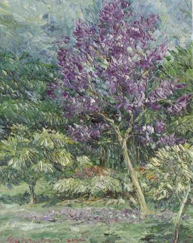 suksom-tree-lilac.jpg